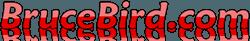 Bruce Bird.com